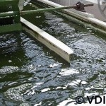 Open Pond vor Algae Production